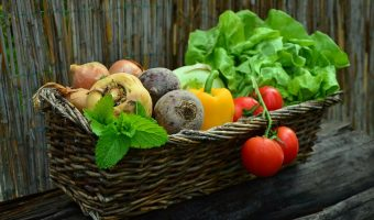 Ways and Means To Gather Food Naturally or Organically